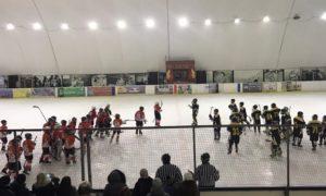 Черговий тур чемпіонату України з хокею серед юнаків