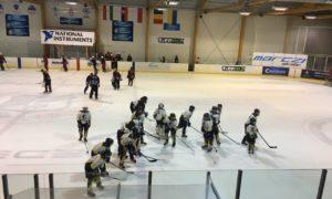 Карпатська хокейна ліга