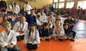 Чемпіонат області з боротьби самбо