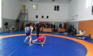 Чемпіонат області серед дорослих з вільної боротьби